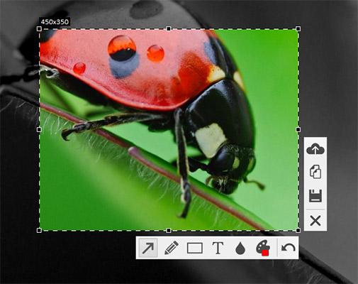 Как сделать скриншот экрана на компьютере - Скриншотер